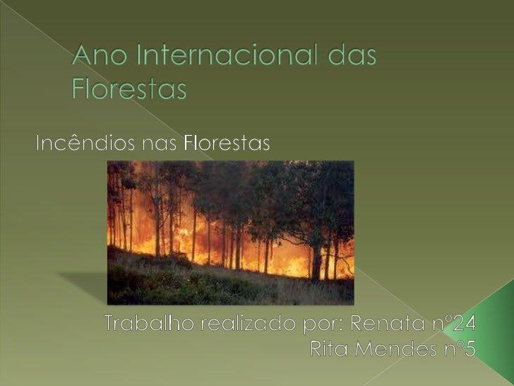 Ano Internacional das Florestas<br />Incêndios nas Florestas<br />Trabalho realizado por: Renata nº24<br />Rita Mendes nº5...