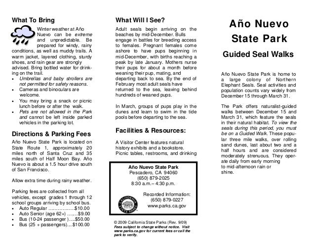 Año Nuevo State Park Guided Walks