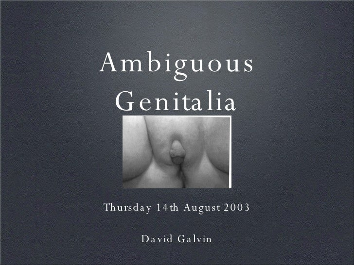 <ul><li>Thursday 14th August 2003 </li></ul><ul><li>David Galvin </li></ul>Ambiguous Genitalia