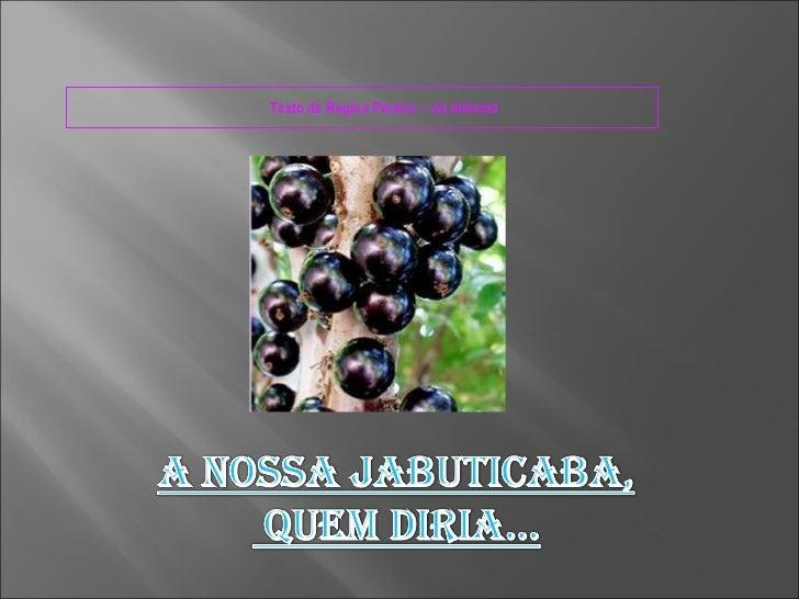 Texto de Regina Pereira – via Internet