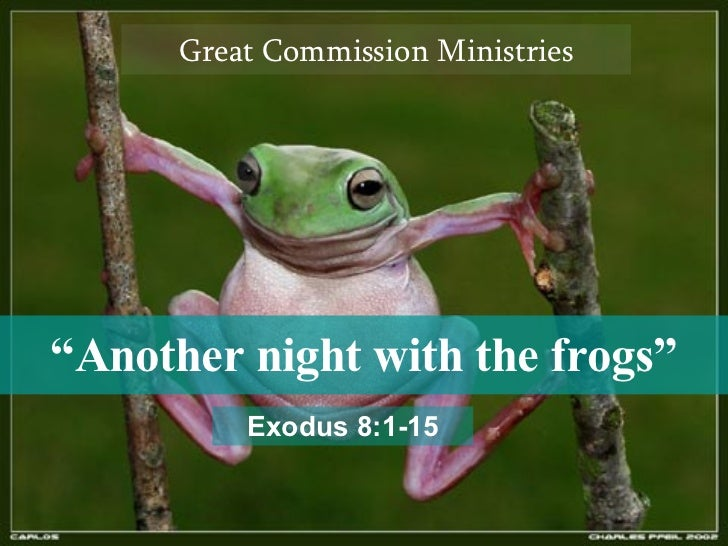 """ Another night with the frogs"" Great Commission Ministries Exodus 8:1-15"