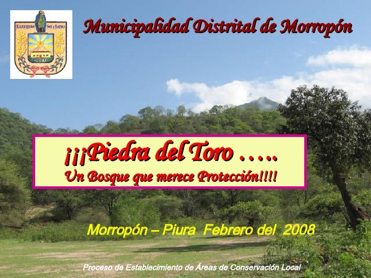 Proceso de Establecimiento de Áreas de Conservación Local ¡¡¡Piedra del Toro ….. Un Bosque que merece Protección!!!! Munic...
