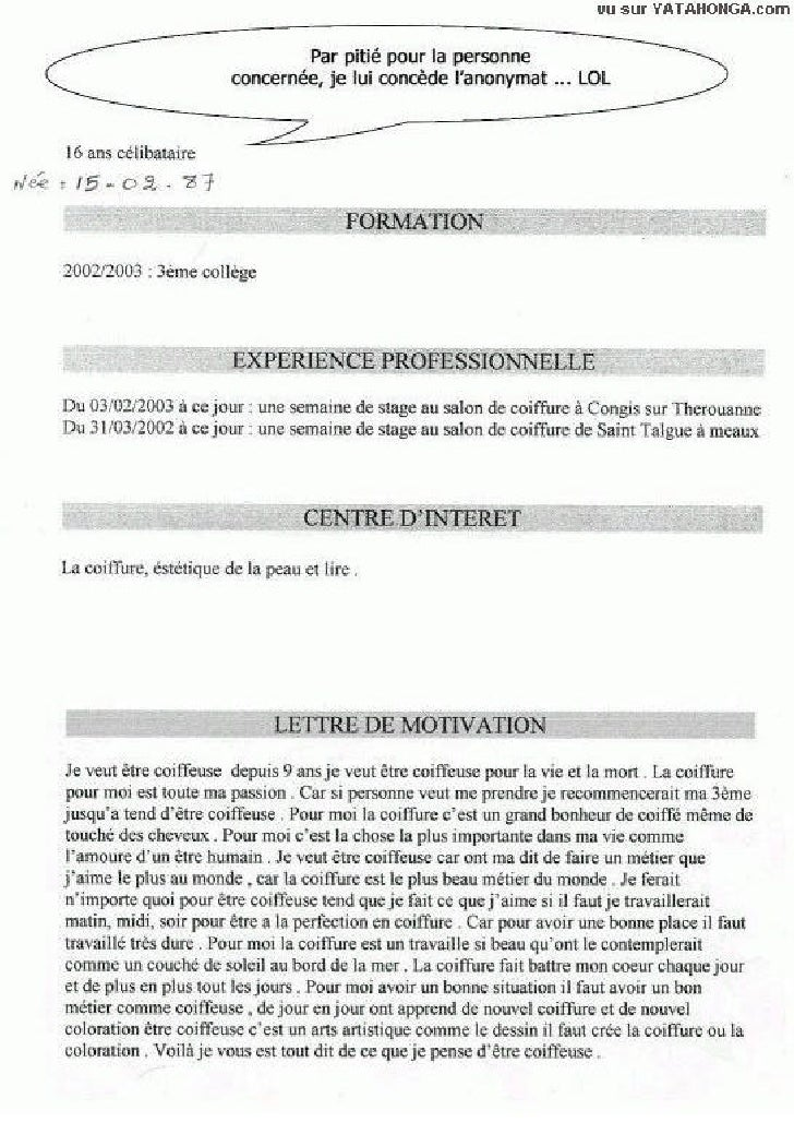 resume format  cv lettre de motivation humour