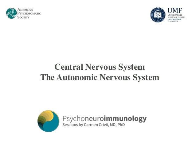 Central Nervous SystemThe Autonomic Nervous System
