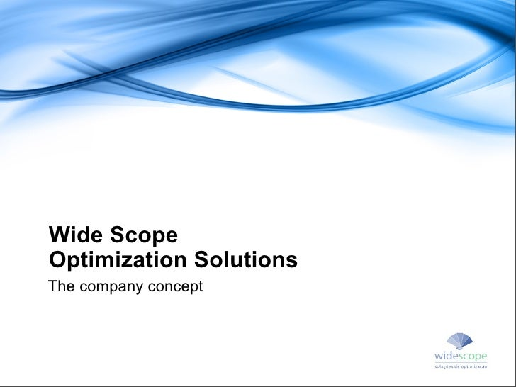 Wide Scope Optimization Solutions The company concept