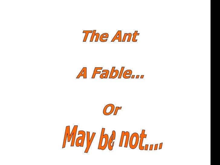 Ant - Management Lesson