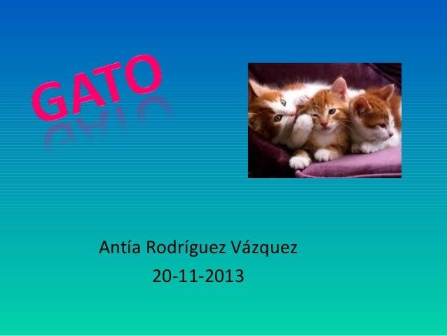 Antía Rodríguez Vázquez 20-11-2013