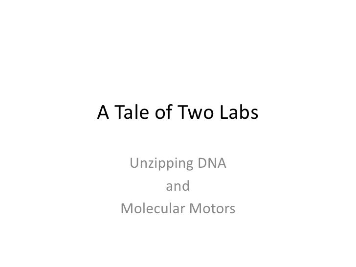 A Tale of Two Labs<br />Unzipping DNA<br />and<br />Molecular Motors<br />