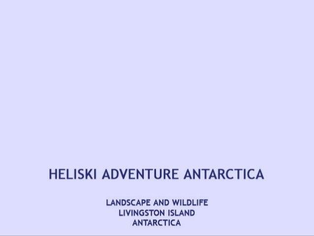 Antarctica patagonia-x