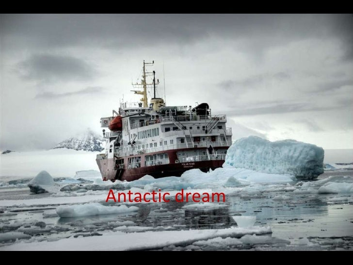 Antarcticdream