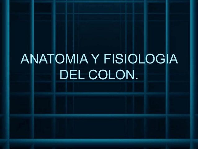 ANATOMIA Y FISIOLOGIA    DEL COLON.