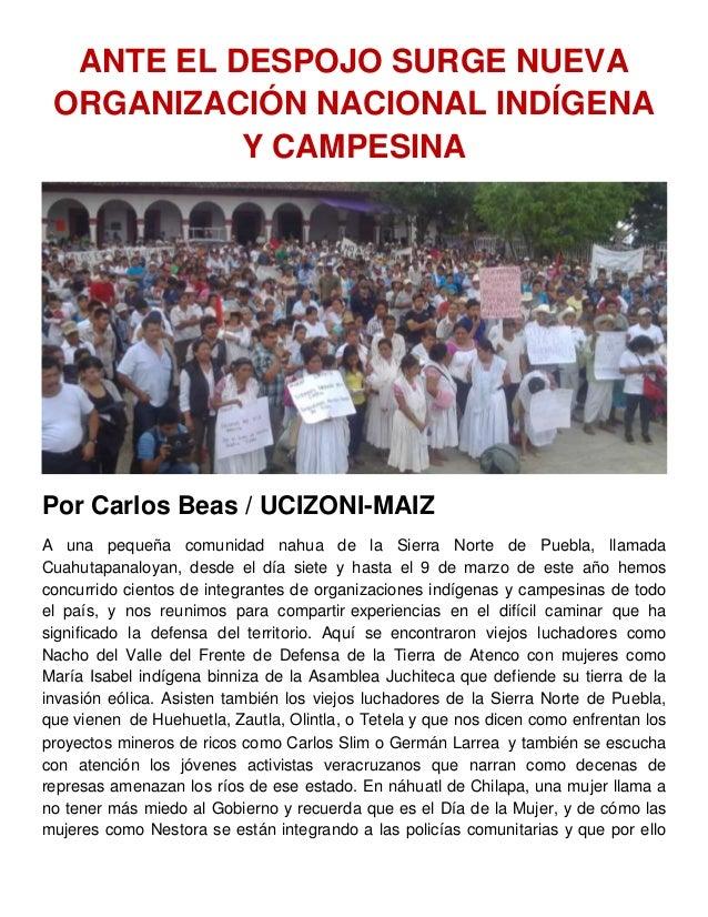 ANTE EL DESPOJO SURGE NUEVA ORGANIZACIÓN NACIONAL INDÍGENA Y CAMPESINA Por Carlos Beas / UCIZONI-MAIZ A una pequeña comuni...
