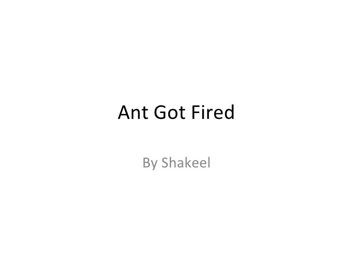 Ant Got Fired