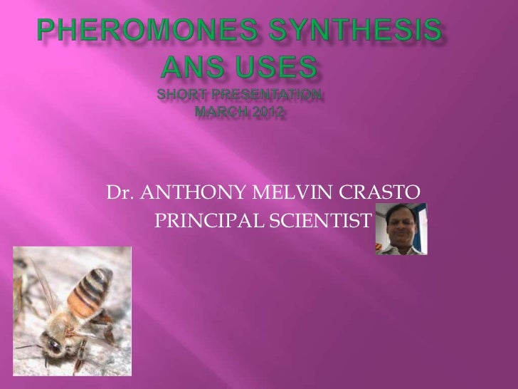Anthony crasto pheromones