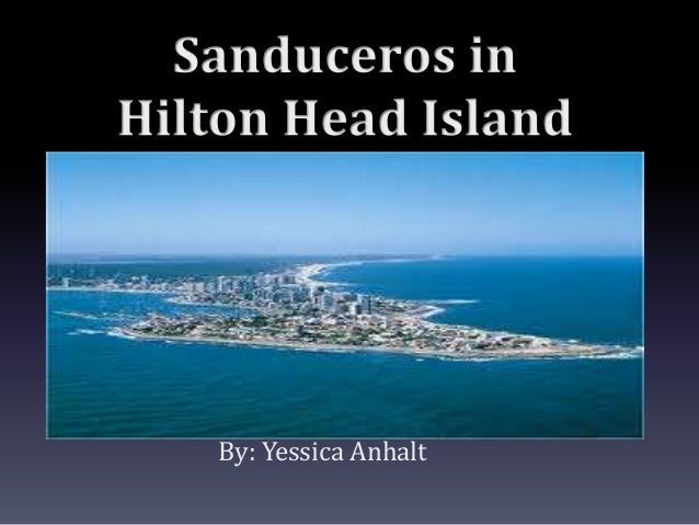 Sanduceros in Hilton Head Island