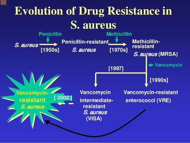 Ciprofloxacin hcl 500 mg antibiotic