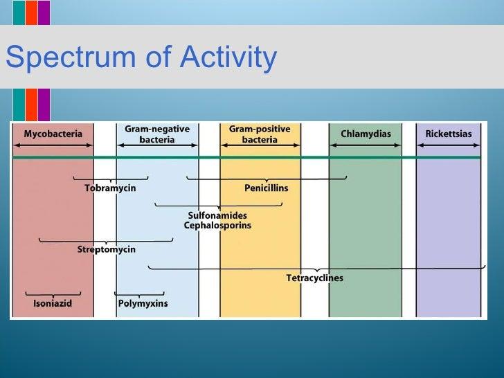 Antibiotic Coverage Chart Tulum Smsender Co