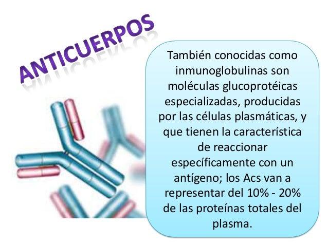 También conocidas como inmunoglobulinas son moléculas glucoprotéicas especializadas, producidas por las células plasmática...