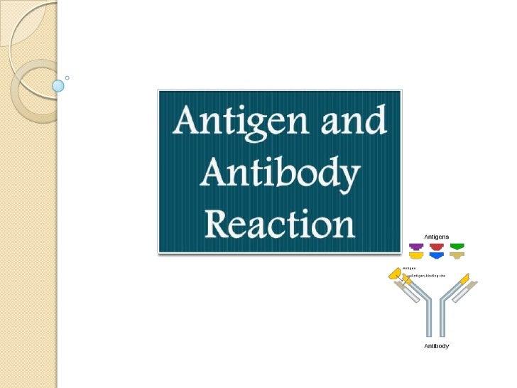 Antigen and antibody reaction