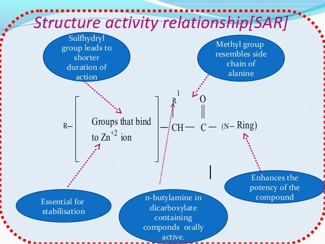 structure activity relationship of adrenergic drugs pdf