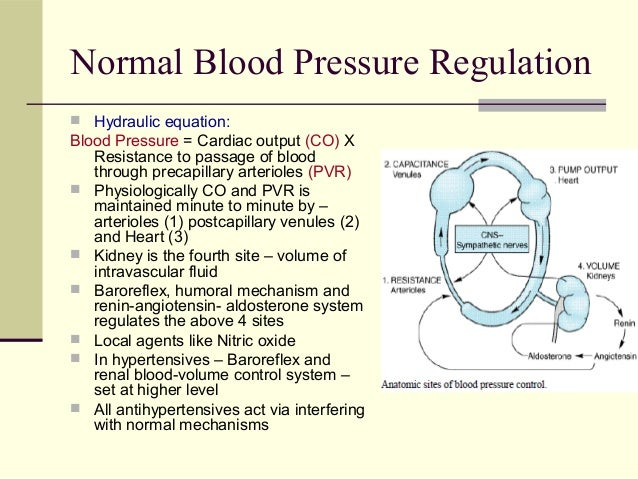 Micardis Antihypertensive Medication
