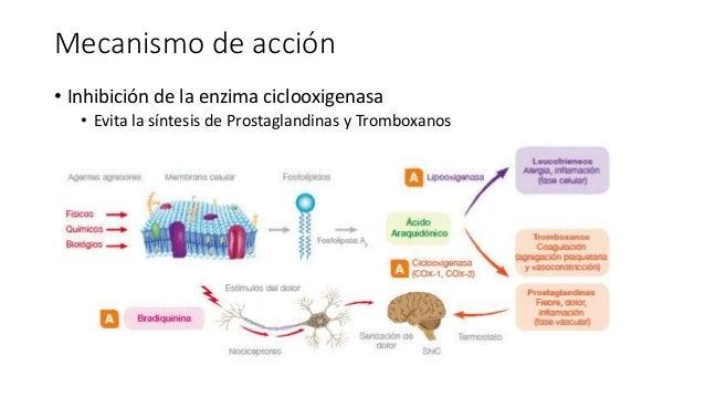 corticosteroides definicion wikipedia