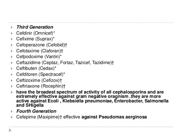 Ceclor Allergy And Ancef