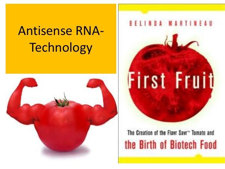 Antisense RNA-Technology<br />