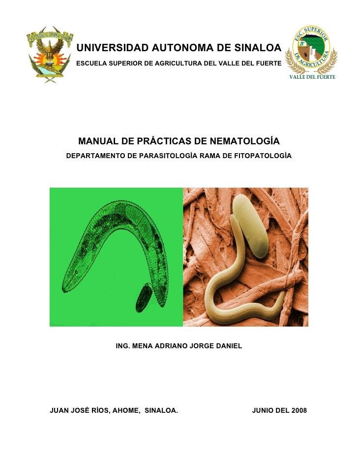 UNIVERSIDAD AUTONOMA DE SINALOA       ESCUELA SUPERIOR DE AGRICULTURA DEL VALLE DEL FUERTE           MANUAL DE PRÁCTICAS D...