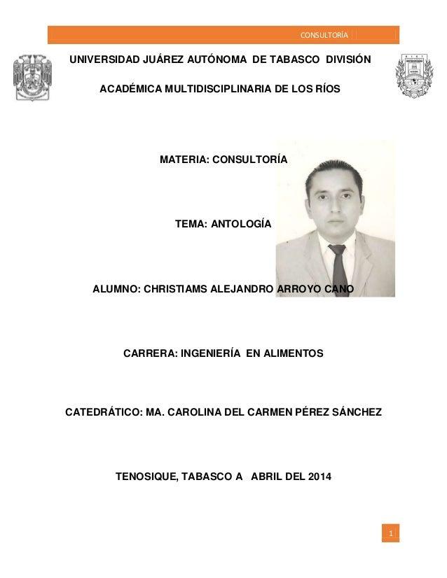 CONSULTORÍA 1 UNIVERSIDAD JUÁREZ AUTÓNOMA DE TABASCO DIVISIÓN ACADÉMICA MULTIDISCIPLINARIA DE LOS RÍOS MATERIA: CONSULTORÍ...
