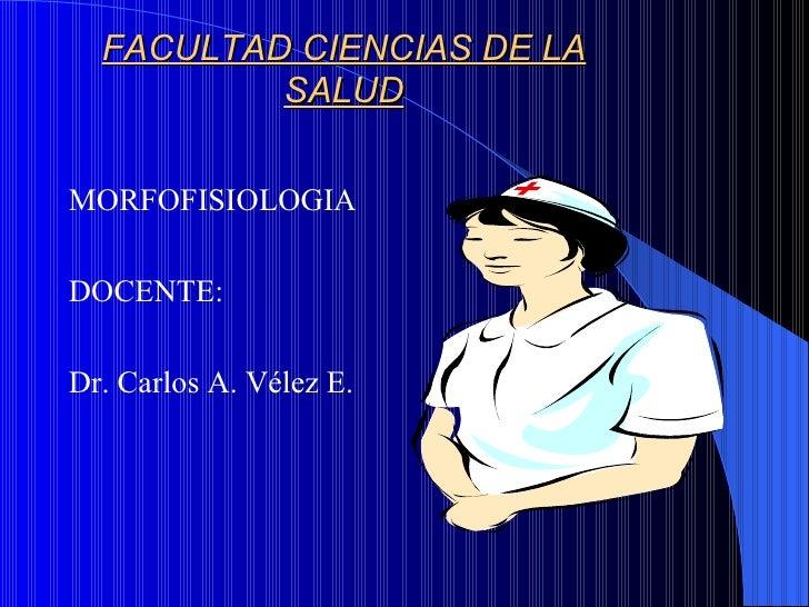 FACULTAD CIENCIAS DE LA          SALUDMORFOFISIOLOGIADOCENTE:Dr. Carlos A. Vélez E.