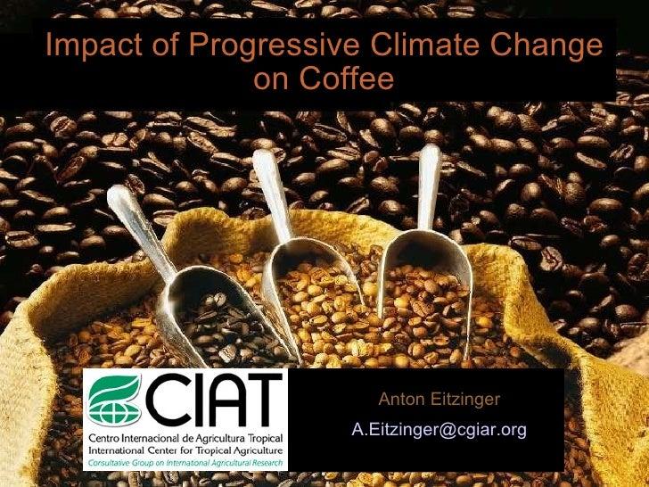 Impact of Progressive Climate Change on Coffee <ul><li>Anton Eitzinger </li></ul><ul><li>[email_address] </li></ul>