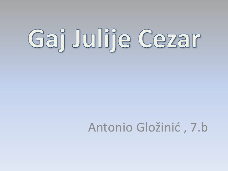 Gaj Julije Cezar