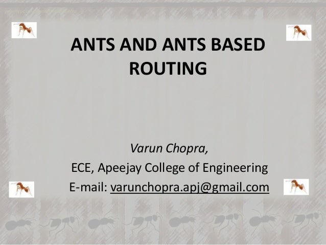 Ants and ants based routing