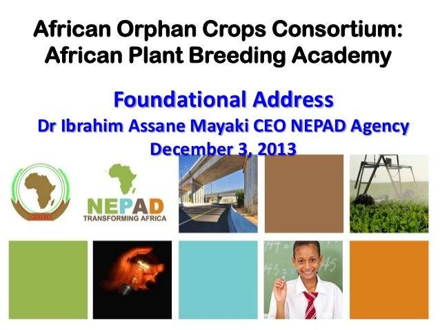 African Orphan Crops Consortium: African Plant Breeding Academy  Foundational Address Dr Ibrahim Assane Mayaki CEO NEPAD A...