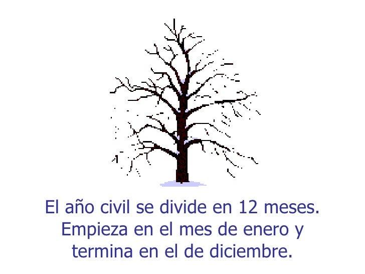 El año civil se divide en 12 meses.  Empieza en el mes de enero y    termina en el de diciembre.