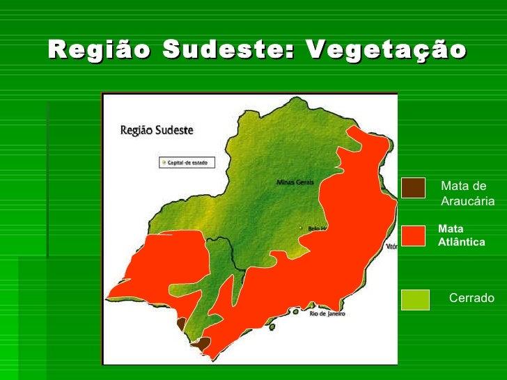 Influência de sementes esverdeadas de soja no vigor das sementes 6