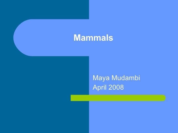 Mammals Maya Mudambi April 2008