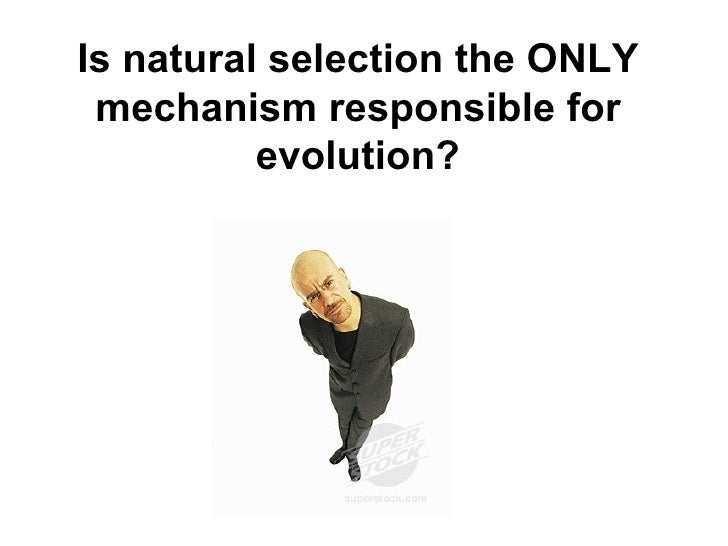 Ap Bio Natural Selection