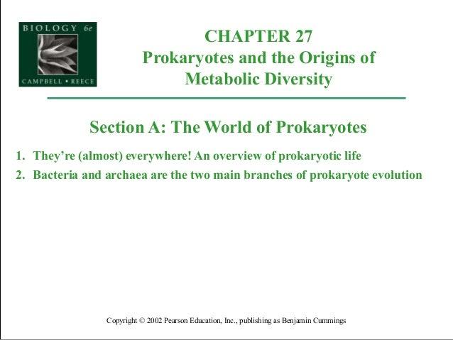 Ap27 prokaryotes