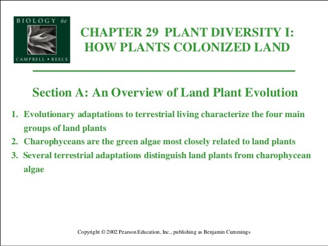 CHAPTER 29 PLANT DIVERSITY I: HOW PLANTS COLONIZED LAND Copyright © 2002 Pearson Education, Inc., publishing as Benjamin C...