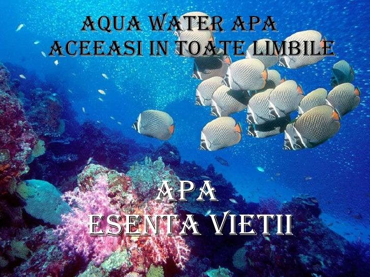 Apa  esenta vietii <ul><li>aqua water apa  aceeasi in toate limbile </li></ul>