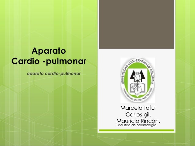 Aparato Cardio -pulmonar aparato cardio-pulmonar Marcela tafur Carlos gil. Mauricio Rincón. Facultad de odontología