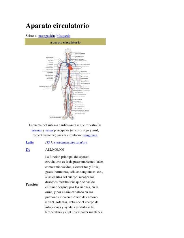 Aparato circulatorioSaltar a: navegación, búsqueda                 Aparato circulatorio  Esquema del sistema cardiovascula...