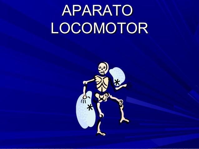Aparatocomotor locomotor