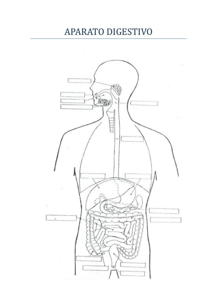 Después de la operación varikoz los síntomas