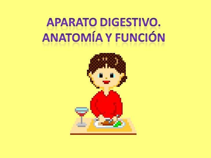 Aparato digestivo blog