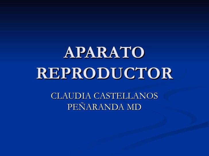 APARATO REPRODUCTOR CLAUDIA CASTELLANOS PEÑARANDA MD
