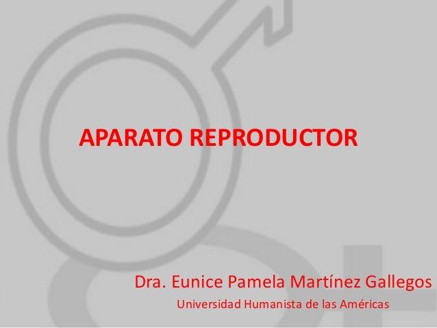 APARATO REPRODUCTOR  Dra. Eunice Pamela Martínez Gallegos Universidad Humanista de las Américas