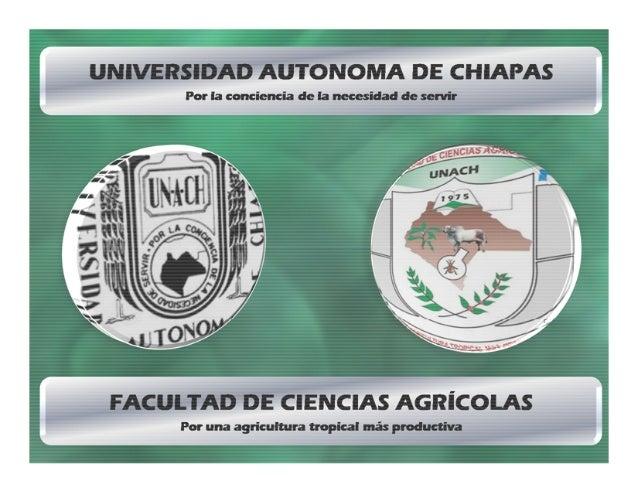 Aparato Reproductor de la Hembra (M.C. Gilberto Martinez Priego)
